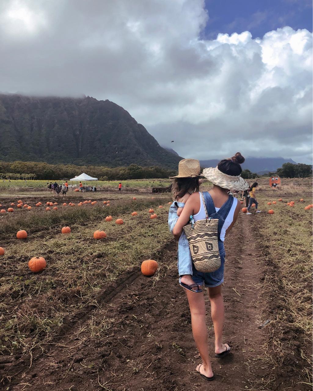 ハワイ ハロウィン パンプキンパッチ